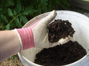 Vermicast is a rich, soil-like substance